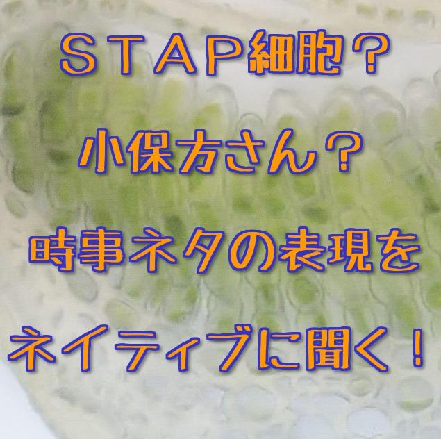 STAP細胞とか小保方さん関連の英語byネイティブ